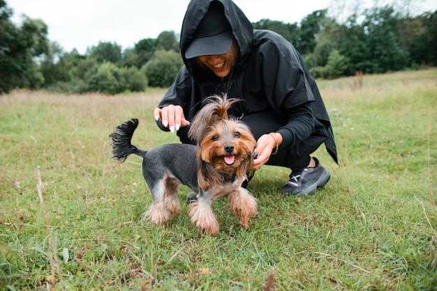 Cachorro pequeno passeando com o dono