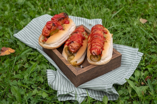 Cachorro-quente com mostarda, ketchup na mesa de piquenique