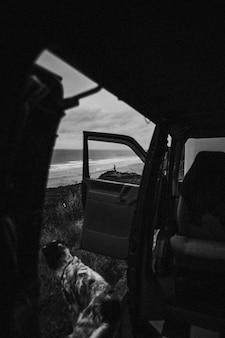 Cachorro sentado perto de um carro olhando para o oceano