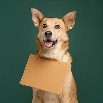 Cachorro sorridente segurando uma faixa vazia