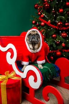 Cachorro vestindo fantasia de papai noel sentado no truque