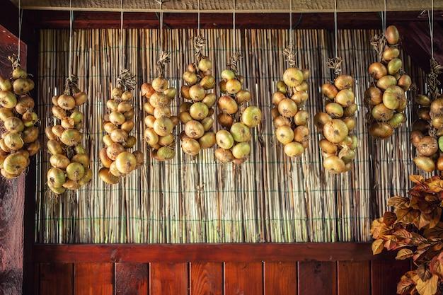 Cachos de cebolas secas pendurados em uma fileira. conceito de vegetal saudável.
