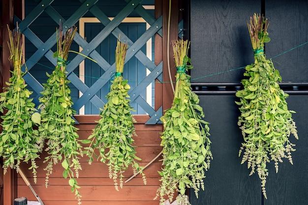 Cachos de hortelã e erva-cidreira são secos sob um dossel de suprimentos médicos