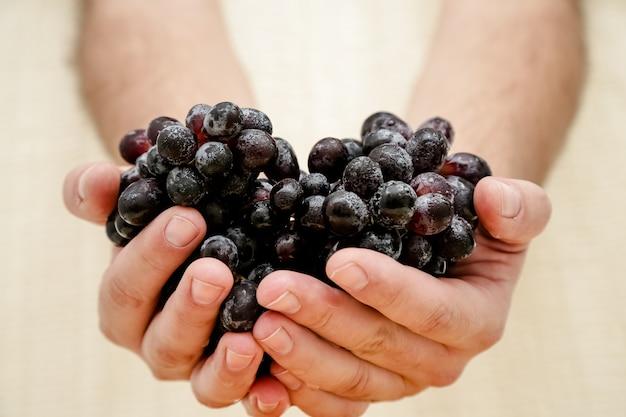 Cachos de uvas pretas de fazendeiros orgânicos naturais na placa preta fundo vista de cima close-up copo