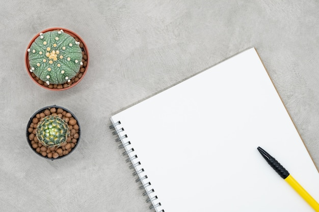 Cacto, caderno e caneta sobre a mesa de escritório, fundo de concreto cinza, lay plana