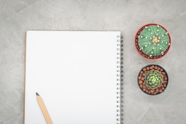 Cacto, caderno e lápis sobre a mesa de escritório, fundo de concreto cinza, lay plana