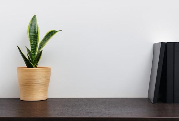 Cacto em uma panela amarela e um livro na mesa escura da área de trabalho e no fundo da parede branca