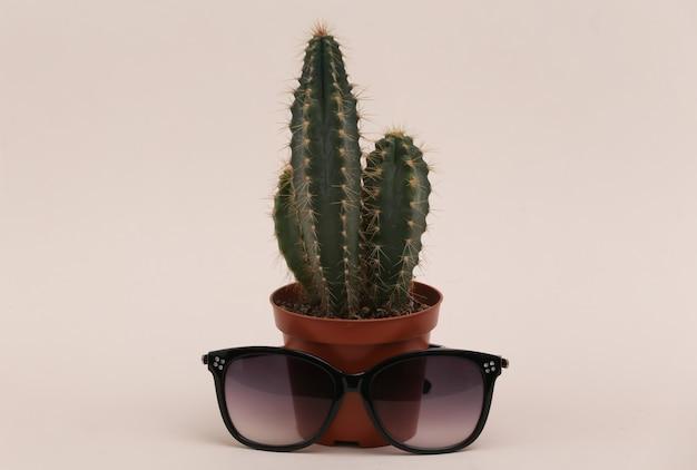 Cacto em uma panela com óculos de sol em um fundo bege