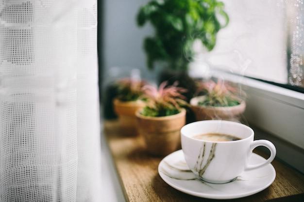 Cactos e café em um peitoril da janela de madeira