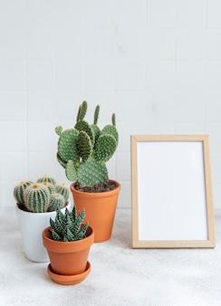 Cactos e plantas suculentas em vasos e modelo de pôster na mesa