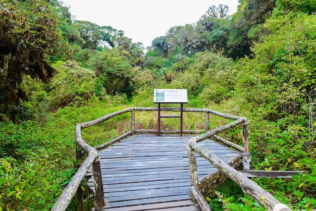 Cadastre-se em ang ka luang nature trail
