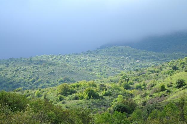 Cadeias de montanhas cobertas por florestas e arbustos