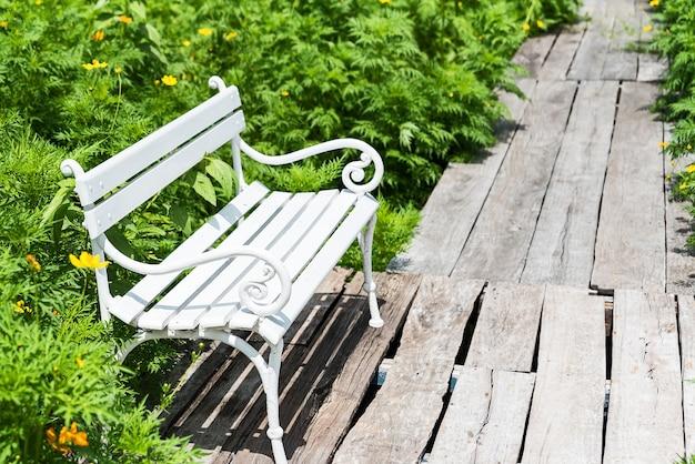 Cadeira branca em um campo de flores do cosmos amarelo
