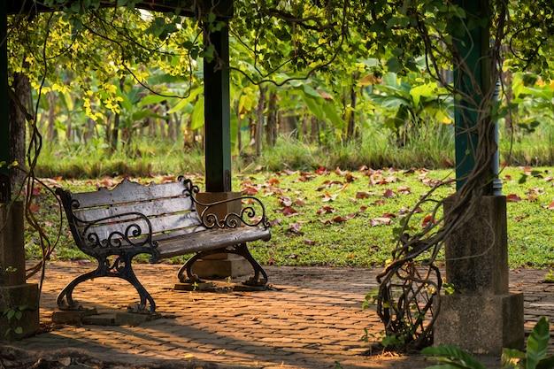 Cadeira de banco de madeira no parque ao pôr do sol