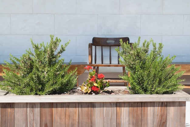 Cadeira de madeira em pequeno jardim