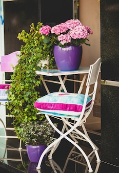 Cadeira decorativa de metal, mesa de jardim e plantas em vasos
