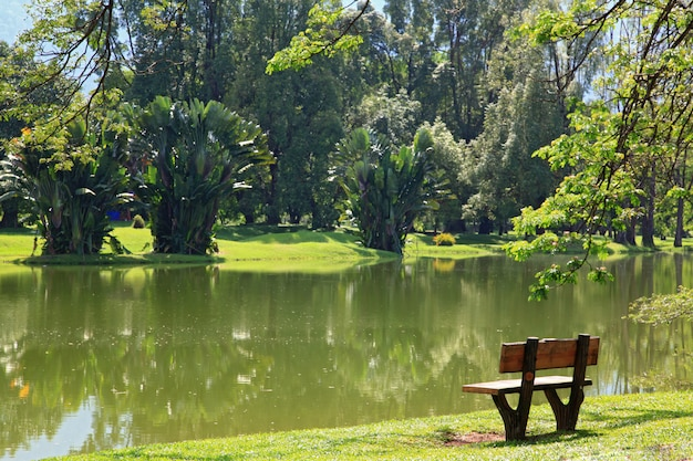 Cadeira madeira, em, lago, jardim, em, taiping, malaysia