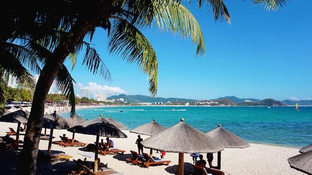 Cadeiras e guarda-chuva em palm beach - tropical holiday banner - china, hainan