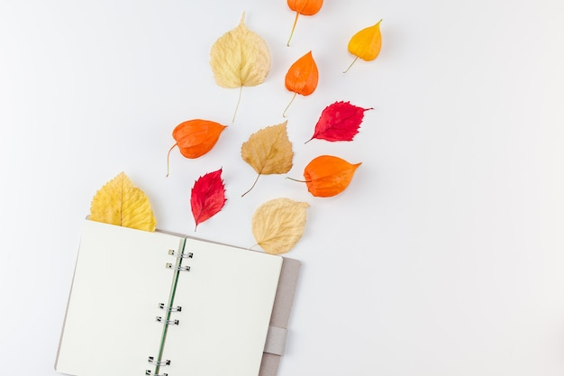 Caderno aberto com flores secas de laranja e folhas de outono