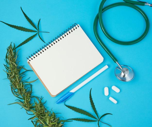 Caderno aberto com folhas brancas em branco, galho de cânhamo com folhas verdes