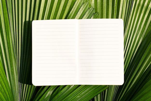 Caderno aberto em folhas de palmeira tropical. vista do topo