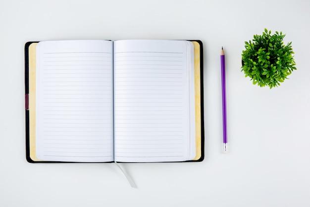 Caderno aberto ou diário para lembrete e memorando