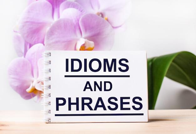 Caderno branco em branco com os idiomas e frases do texto na mesa no contexto de uma orquídea rosa claro.