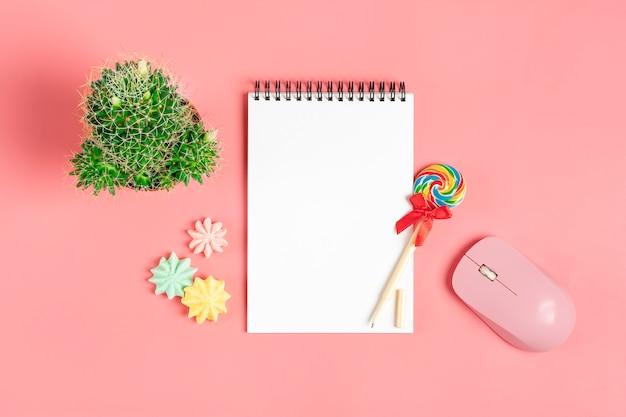 Caderno branco para notas, merengue, caneta - pirulito, suculenta flor em casa no fundo rosa