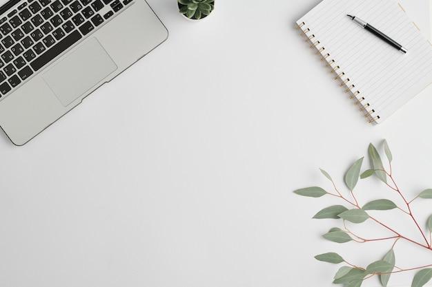 Caderno com caneta, pequena planta doméstica em vaso, galho com folhas verdes e teclado de laptop no espaço em branco