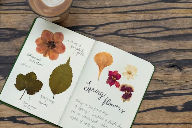Caderno com folhas e flores prensadas