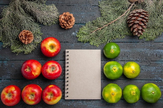 Caderno de maçãs com vista de cima, limas, seis maçãs amarelas-avermelhadas, caderno branco e seis limas na superfície cinza ao lado dos ramos e cones de abeto