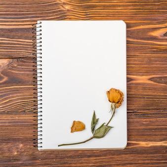 Caderno de vista superior com flor seca no topo