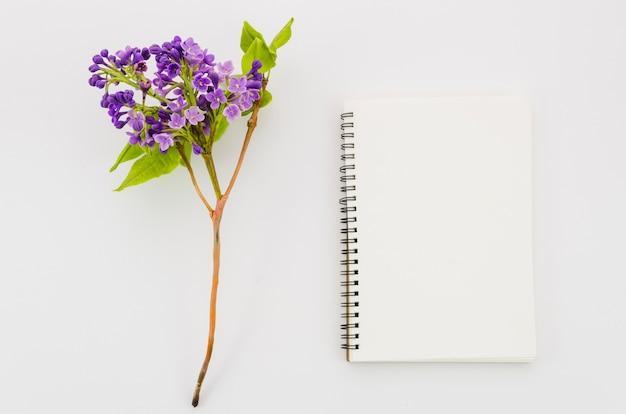 Caderno de vista superior com flor