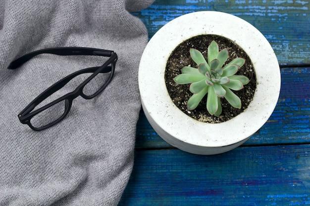 Caderno de vista superior com folha vazia, caneta, óculos, plantas