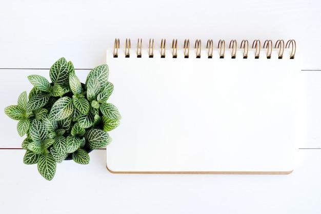 Caderno em branco sobre fundo branco de madeira