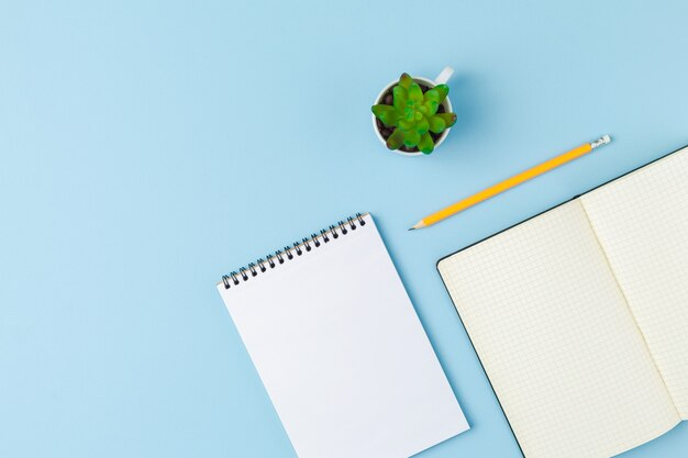 Caderno espiral com o bloco de notas aberto, um lápis e uma planta na parede azul isolada. conceito de design com espaço de cópia para anotações. página em branco para texto comercial. vista superior do bloco de notas da escola.