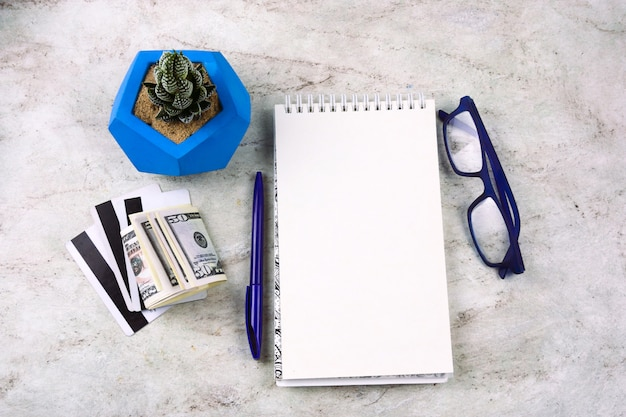 Caderno liso da configuração com a folha branca em branco, pena, dinheiro, cartões de crédito, vidros e succulent