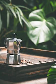 Café e folhas tropicais, close-up