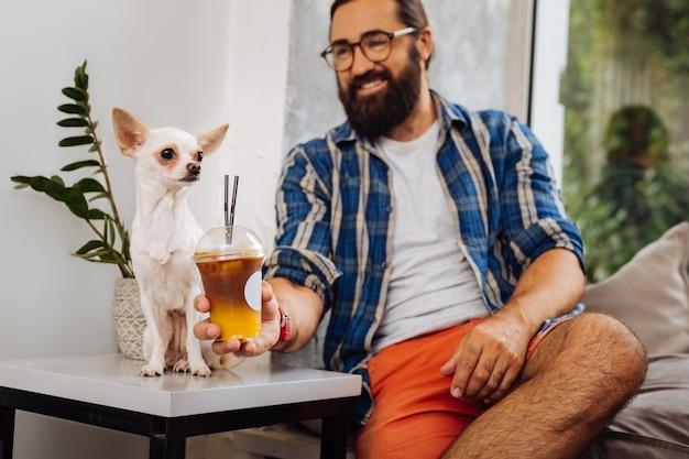 Café gelado. proprietário carinhoso e sorridente, de cabelos escuros, oferecendo café gelado para seu cachorrinho engraçado e fofo