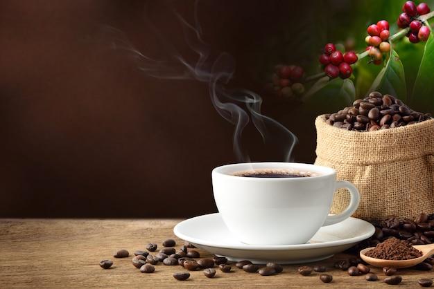 Café quente com grãos de café e sementes de café no fundo da árvore