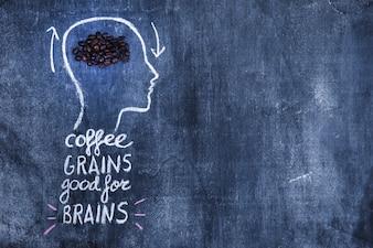 Café torrado feijão na cabeça de contorno com texto no quadro-negro