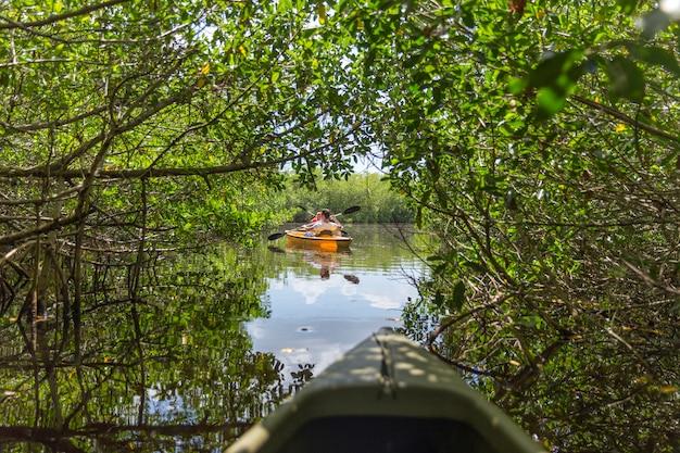 Caiaque no parque nacional de everglades, flórida, eua