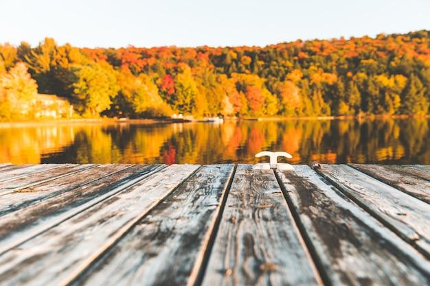 Cais de madeira vazio no lago com árvores