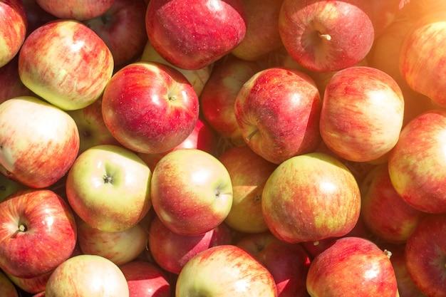 Caixa de maçãs vermelhas