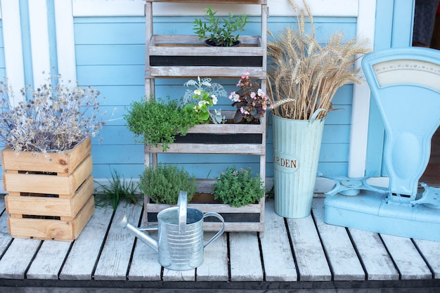 Caixa de madeira com flores secas e plantas verdes junto à parede da casa