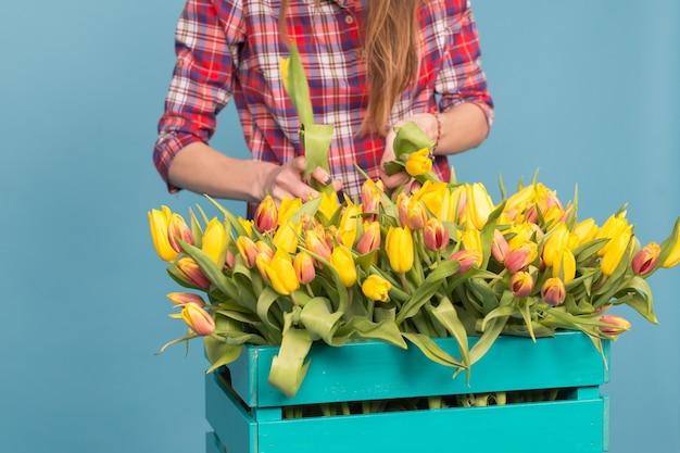 Caixa de madeira com tulipas e mãos de jardineiro na parede azul