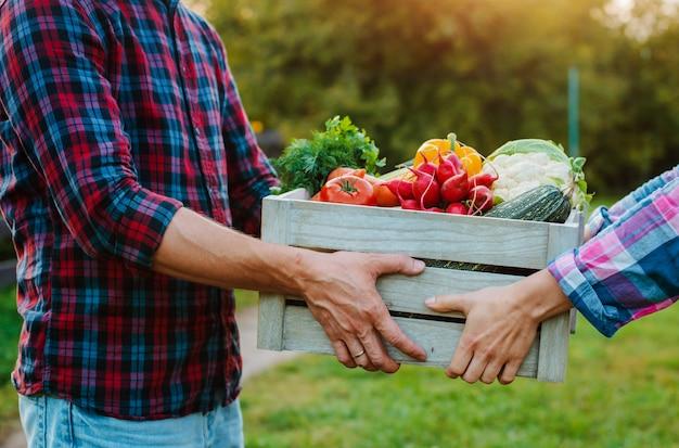 Caixa de madeira com vegetais da fazenda nas mãos de homens e mulheres, close-up.