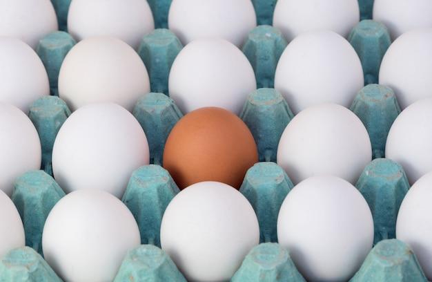 Caixa de ovo marrom, destacando um único ovo branco