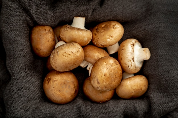Caixa de pano cinza cheia de cogumelos