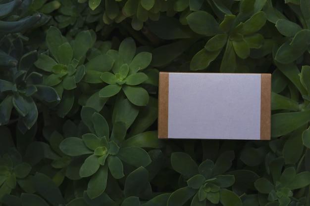 Caixa de papelão de maquete com etiqueta branca e fundo natural com espaço de cópia
